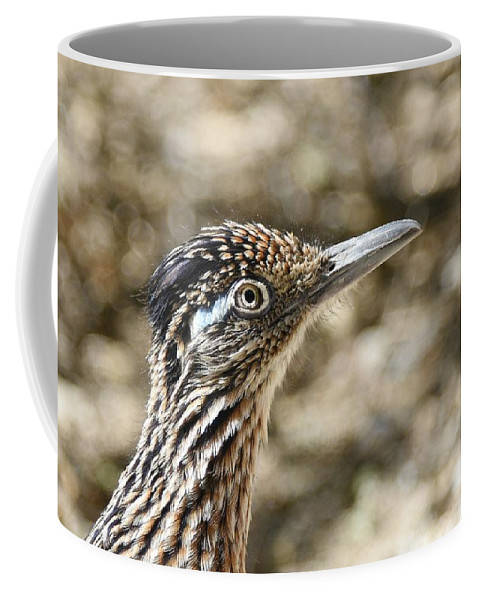 Greater Roadrunner Coffee Mug featuring the photograph Greater Roadrunner by Fraida Gutovich