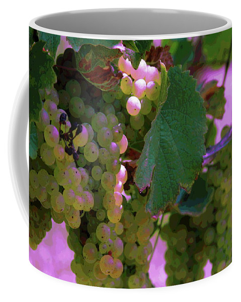Green Grapes Coffee Mug featuring the photograph Green Grapes On The Vine 12 by Cathy Lindsey