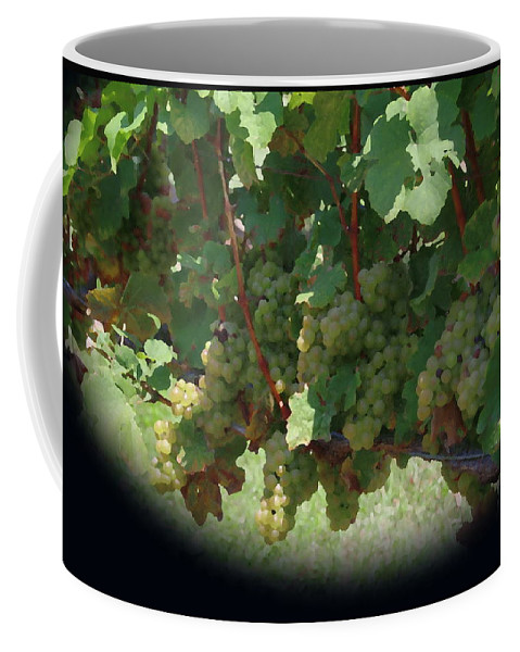 Green Grapes Coffee Mug featuring the photograph Green Grapes On The Vine 16 by Cathy Lindsey