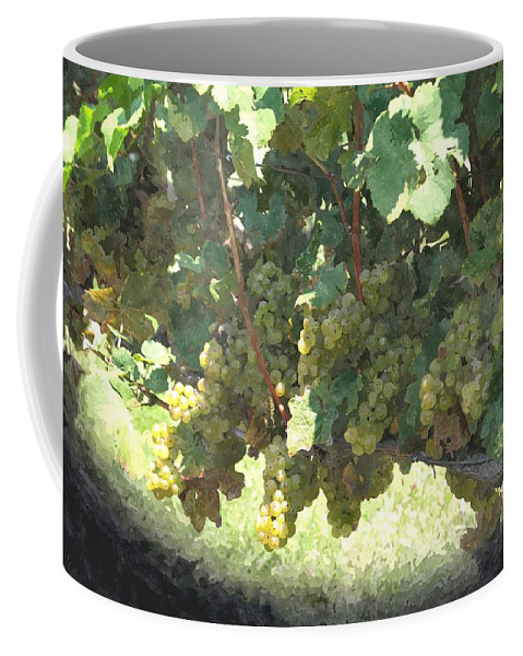 Green Grapes Coffee Mug featuring the photograph Green Grapes On The Vine 17 by Cathy Lindsey
