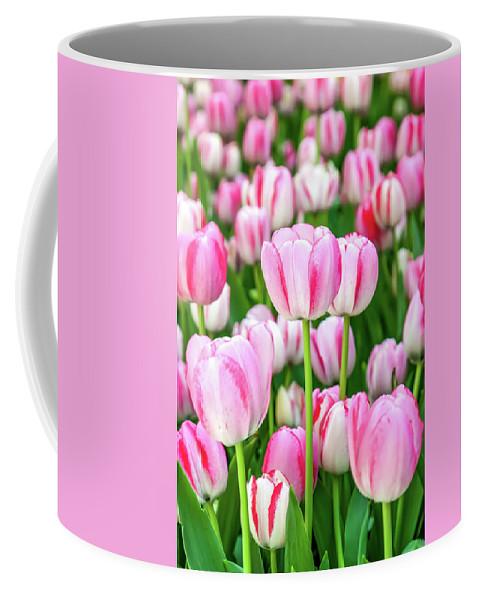 Flowers Coffee Mug featuring the photograph Happy Again by Az Jackson