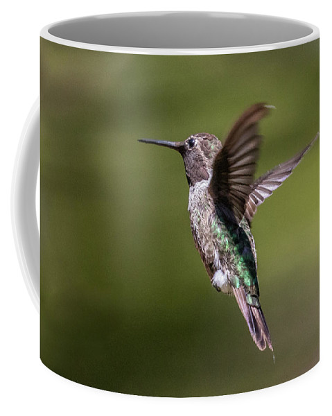 Hummingbird Bird Flight Hovering Green Brown Flight Flying Floating Coffee Mug featuring the photograph Hovering Hummer by Lee Ann Baker