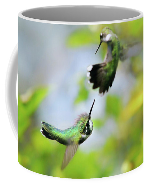 Ruby Throated Hummingbird Coffee Mug featuring the photograph Hummingbirds Ensuing Battle by Christina Rollo