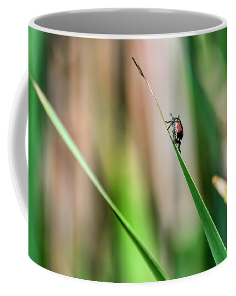 Nature Coffee Mug featuring the photograph Japanese Beetle Climbs Plant by Francis Sullivan
