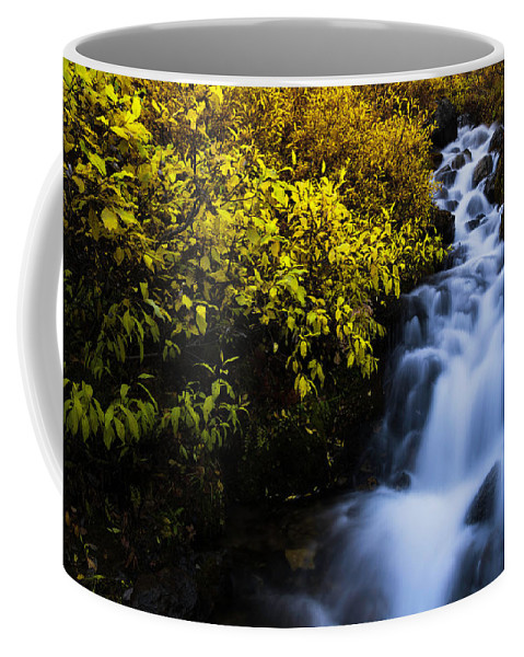 Alaska Coffee Mug featuring the photograph Last Shot by Chad Dutson