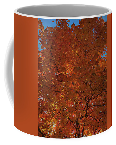 Fall Coffee Mug featuring the photograph Leaves Of Fire by Lora J Wilson