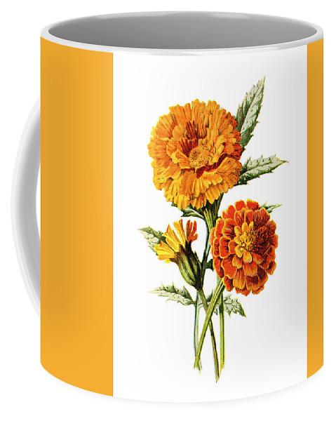 Jessamine Coffee Mug featuring the mixed media Marigold Flower by Naxart Studio