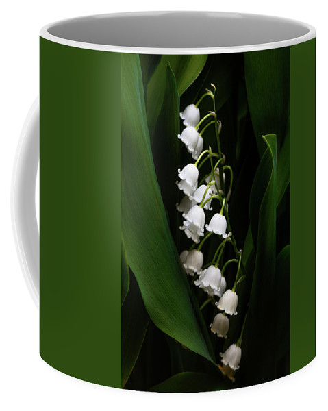 Convallaria Majalis Coffee Mug featuring the photograph May Lily Aka Lily Of The Valley by Tom Mc Nemar