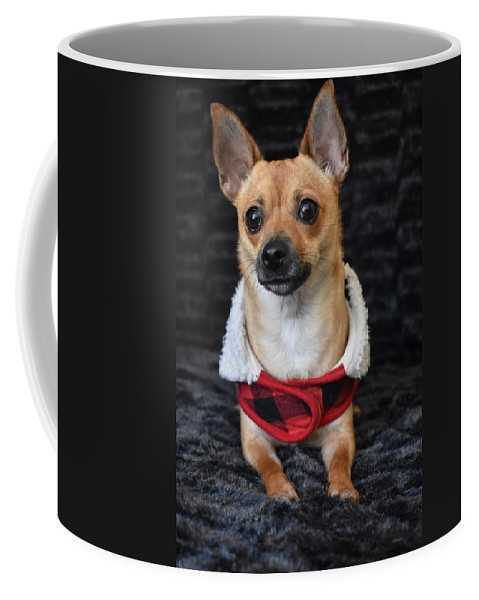 Chihuahua Coffee Mug featuring the digital art Miracle by Cassidy Marshall
