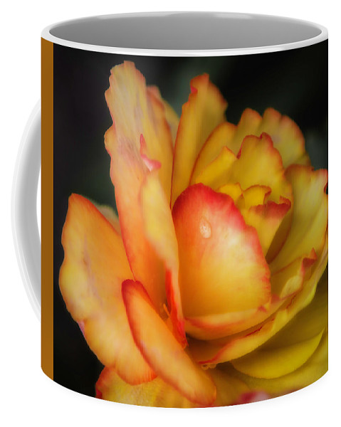 Flower Coffee Mug featuring the photograph Missing You 7571 by Karen Celella