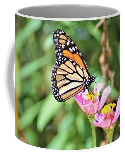 Monarch Coffee Mug featuring the photograph Monarch's Stance... by Kinza Images