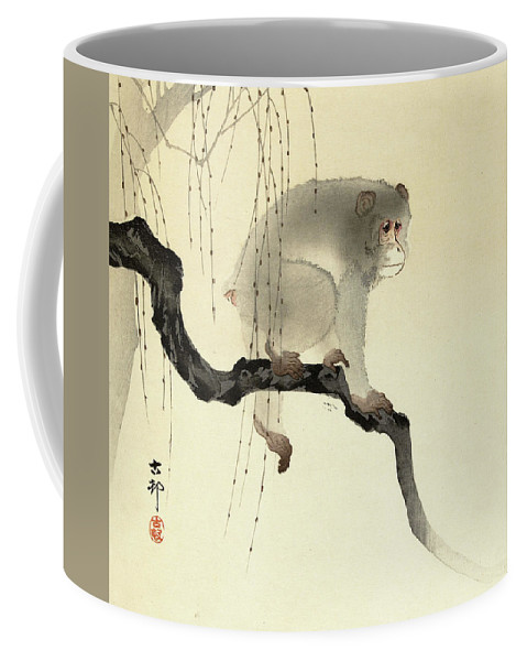 Brown Spider Monkey Coffee Mugs Fine Art America