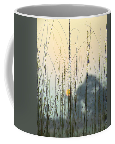 Landscape Coffee Mug featuring the photograph morning Star by Ravi Bhardwaj