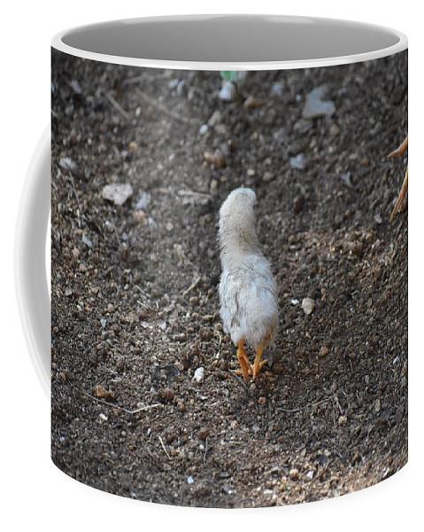 Baby Chick Coffee Mug featuring the digital art Orange Feet by Cassidy Marshall