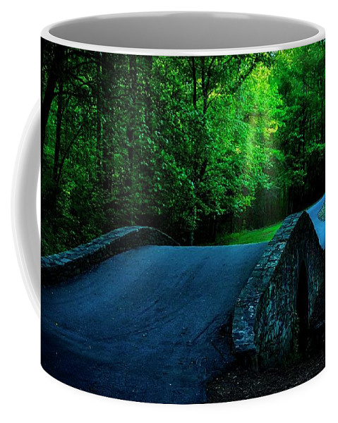 Bridge Coffee Mug featuring the photograph Over the Bridge and Through the Woods by Zayne Diamond Photographic