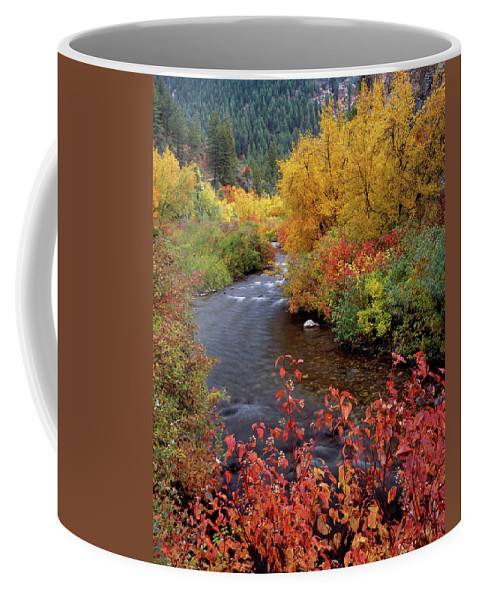 Idaho Scenics Coffee Mug featuring the photograph Palisades Creek Canyon Autumn by Leland D Howard