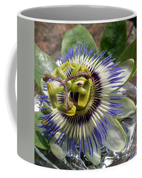 Coffee Mug featuring the photograph Passionflower by Paola Baroni