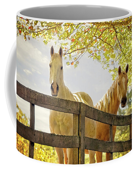 Horses Coffee Mug featuring the photograph Pasture Buddies by SL Ernst