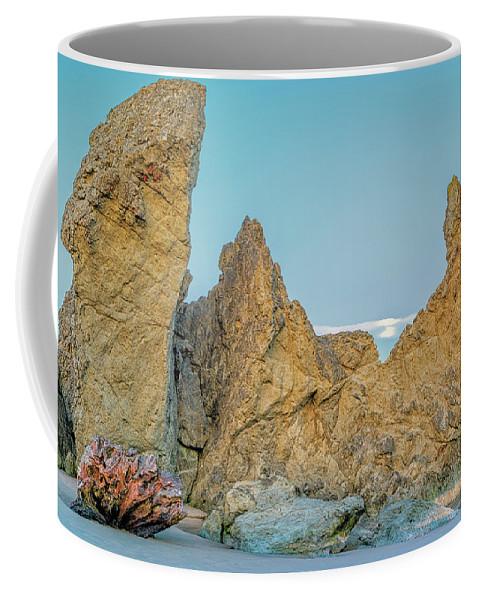 Bandon Beach Coffee Mug featuring the photograph Petrified Tree Root Ball by Jim Thompson