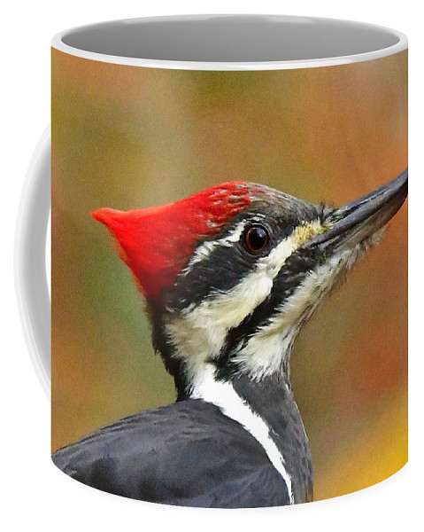 Bird Coffee Mug featuring the photograph Pileated Woodpecker, 9118 by Michael Peychich