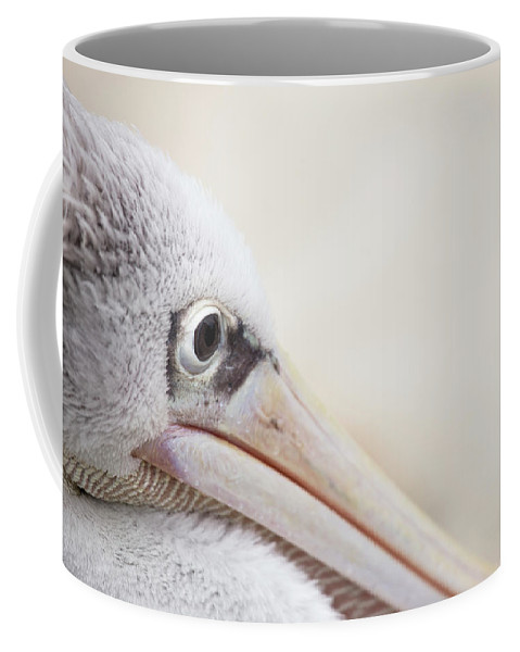 Pink Backed Pelican Coffee Mug featuring the photograph Pink Backed Pelican by Karol Livote