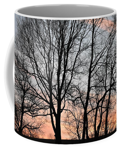 Trees Coffee Mug featuring the photograph Pink Sky by Cassidy Marshall