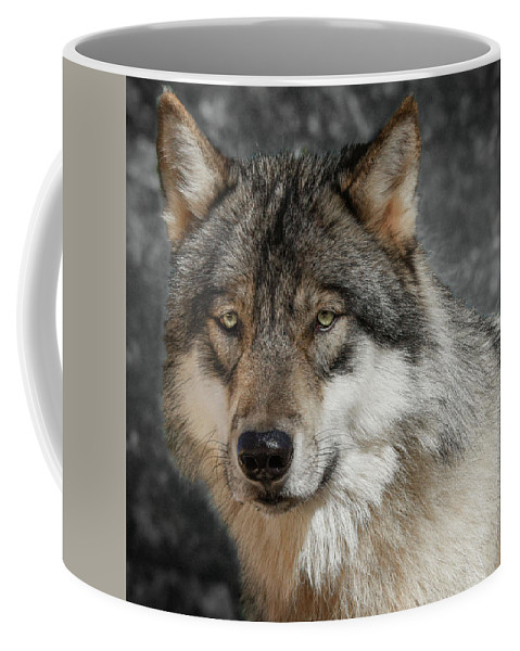 Portrait Of A Timber Wolf Coffee Mug For Sale By Jeannee Gannuch