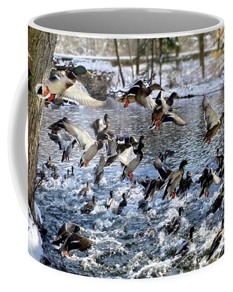 Ducks Coffee Mug featuring the photograph Put To Flight by Lyuba Filatova