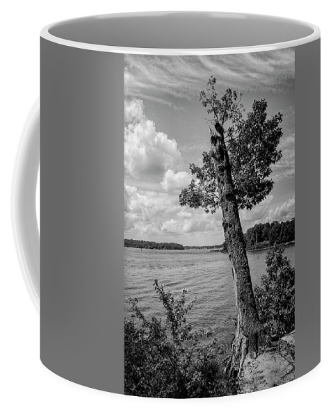 Chesapeake Coffee Mug featuring the photograph Quiet Waters by Mike Lent