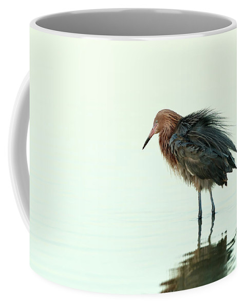 Reddish Egret Coffee Mug featuring the photograph Redneck by Beve Brown-Clark Photography