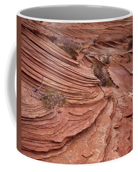 Texture Coffee Mug featuring the photograph Sand Texture by Leland D Howard