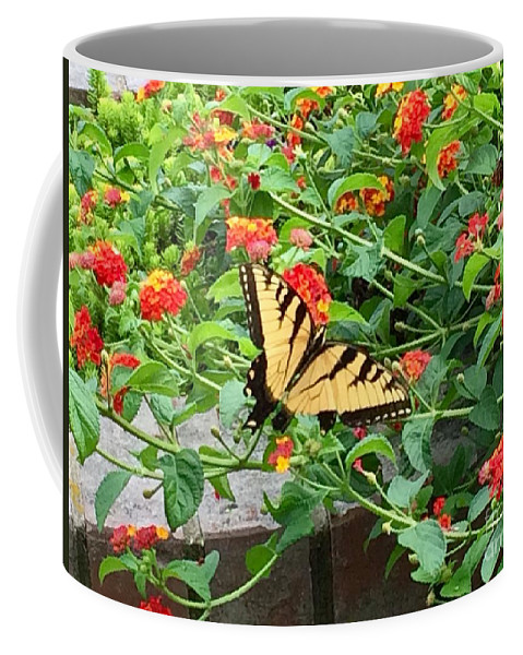 Butterfly Coffee Mug featuring the photograph Snacking by Laurel Adams