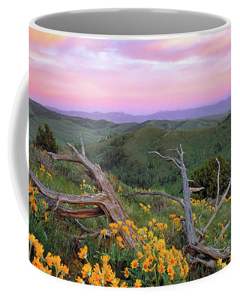 Idaho Scenics Coffee Mug featuring the photograph Spring Sunset by Leland D Howard