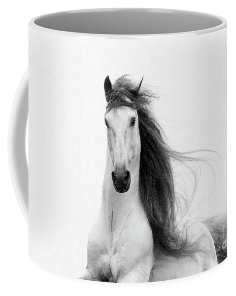 Horse Coffee Mug featuring the photograph Stallion's Glory by Carol Walker