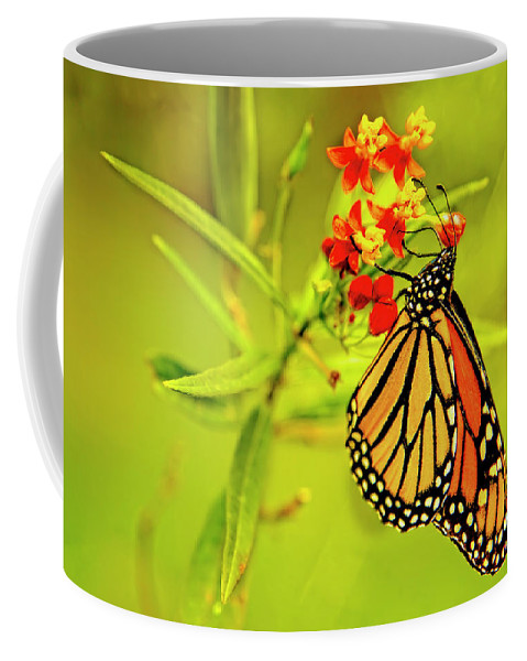 Monarch Coffee Mug featuring the photograph The Monarch Butterfly by Kay Brewer