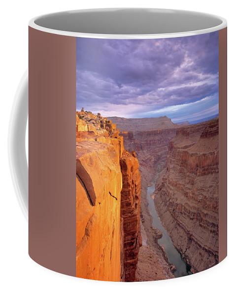 Arizona Coffee Mug featuring the photograph Toroweap Overlook Cliff by Leland D Howard