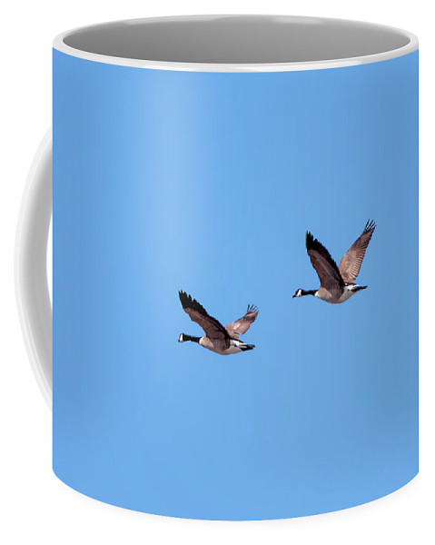 Two Coffee Mug featuring the photograph Two Canadian Geese by Todd Klassy