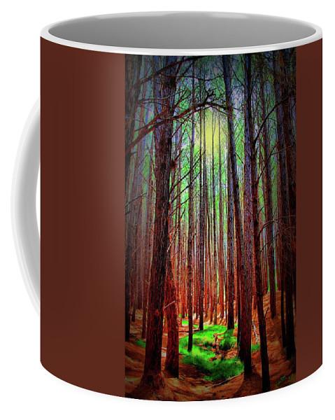 Forest Coffee Mug featuring the photograph Waihou Forest - Maui by DJ Florek
