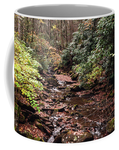 Fall Coffee Mug featuring the photograph Washington Creek by Lj Lambert
