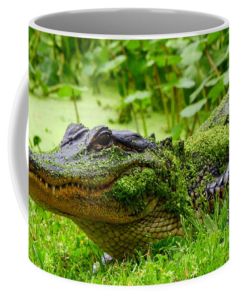 Alligator Coffee Mug featuring the photograph Wearin O' The Green by Charlotte Schafer