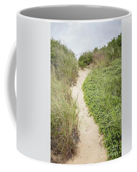 Wellfleet Coffee Mug featuring the photograph Wellfleet Sand Dunes by Edward Fielding
