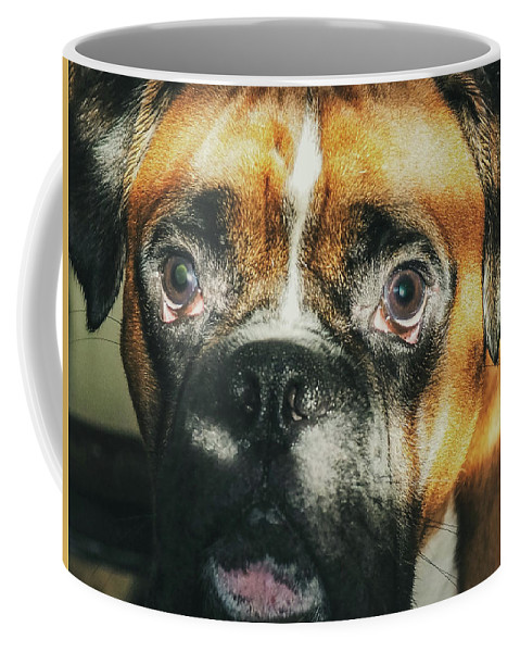 Dog Coffee Mug featuring the photograph Where'd Everybody Go by CWinslow Shafer