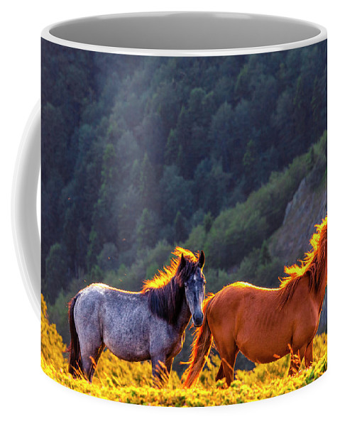 Balkan Mountains Coffee Mug featuring the photograph Wild Horses by Evgeni Dinev