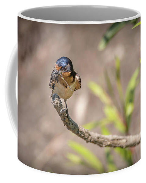Bird Coffee Mug featuring the photograph 20-0616-0527 by Anthony Roma