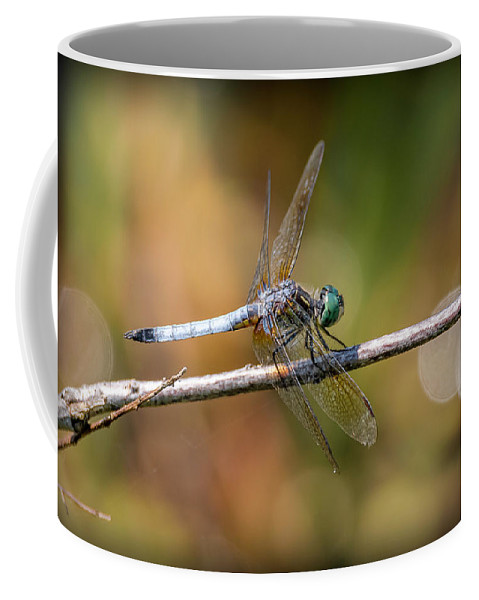 Insects Coffee Mug featuring the photograph 20-0616-0564 by Anthony Roma