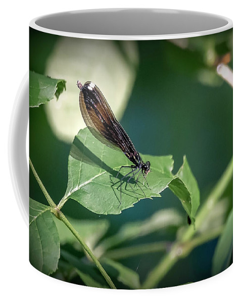 Insects Coffee Mug featuring the photograph 20-0621-0645 by Anthony Roma