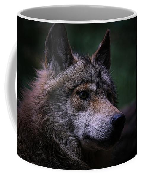 Wolf Coffee Mug featuring the photograph Mexican Grey Wolf by Ernie Echols