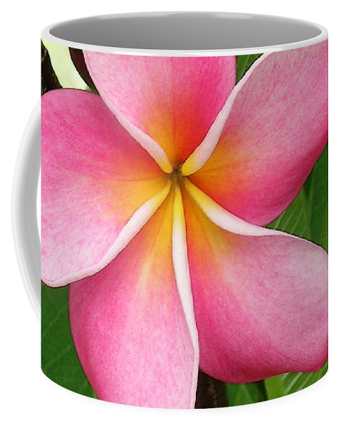 Hawaii Iphone Cases Coffee Mug featuring the photograph April Plumeria by James Temple