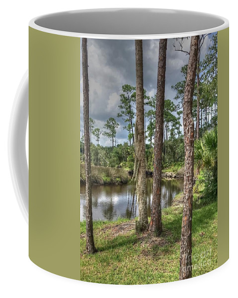 Trees Coffee Mug featuring the photograph Between the Pines by Debbi Granruth