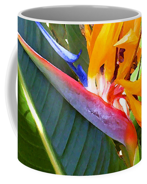 Hawaii Greeting Cards Coffee Mug featuring the photograph Bird of Paradise by James Temple